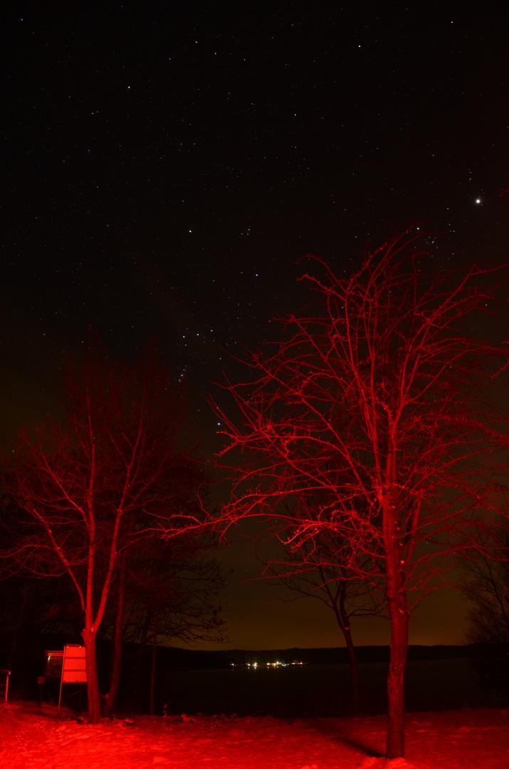 Die rote Nacht