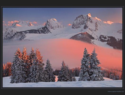 Die rote Nebelwelle