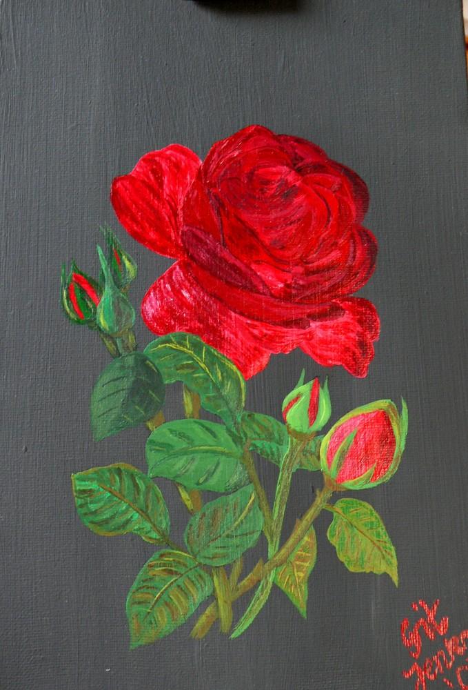 Die rote Rose ...