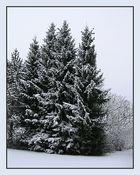 Die Rückkehr des Winters