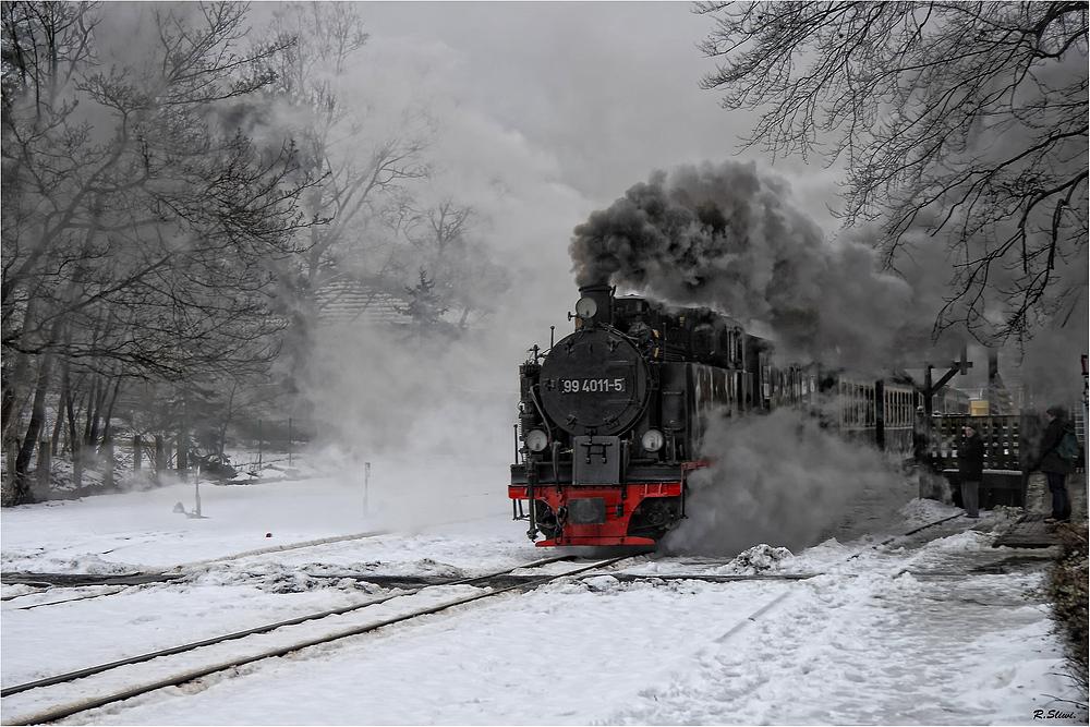Die Rügensche Kleinbahn