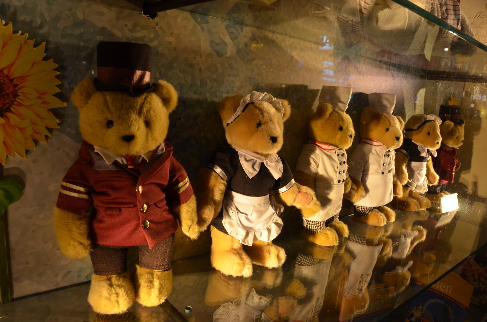 Die Sacher Teddy stehen schon Spalier