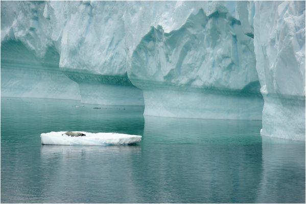 die Säulen der Antarktis