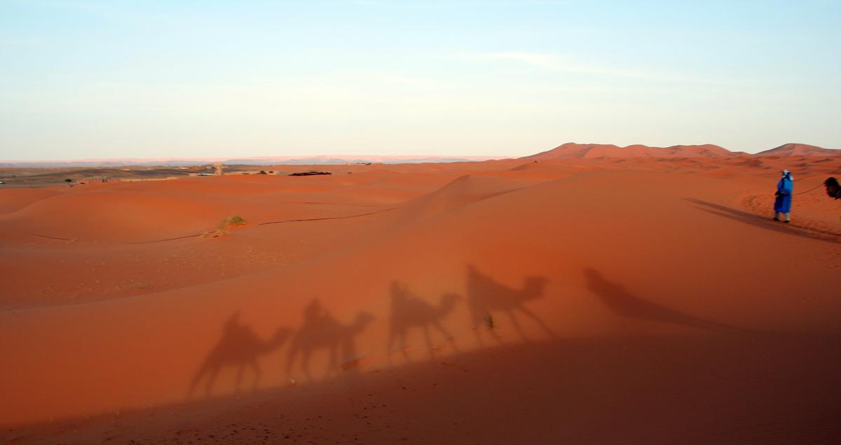 Die Sanddünen der Erg Chebbi Wüste (Marokko)