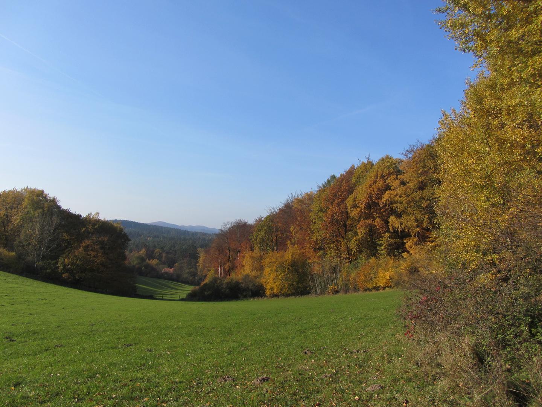 Die sanften Hügel des Teutoburger Waldes