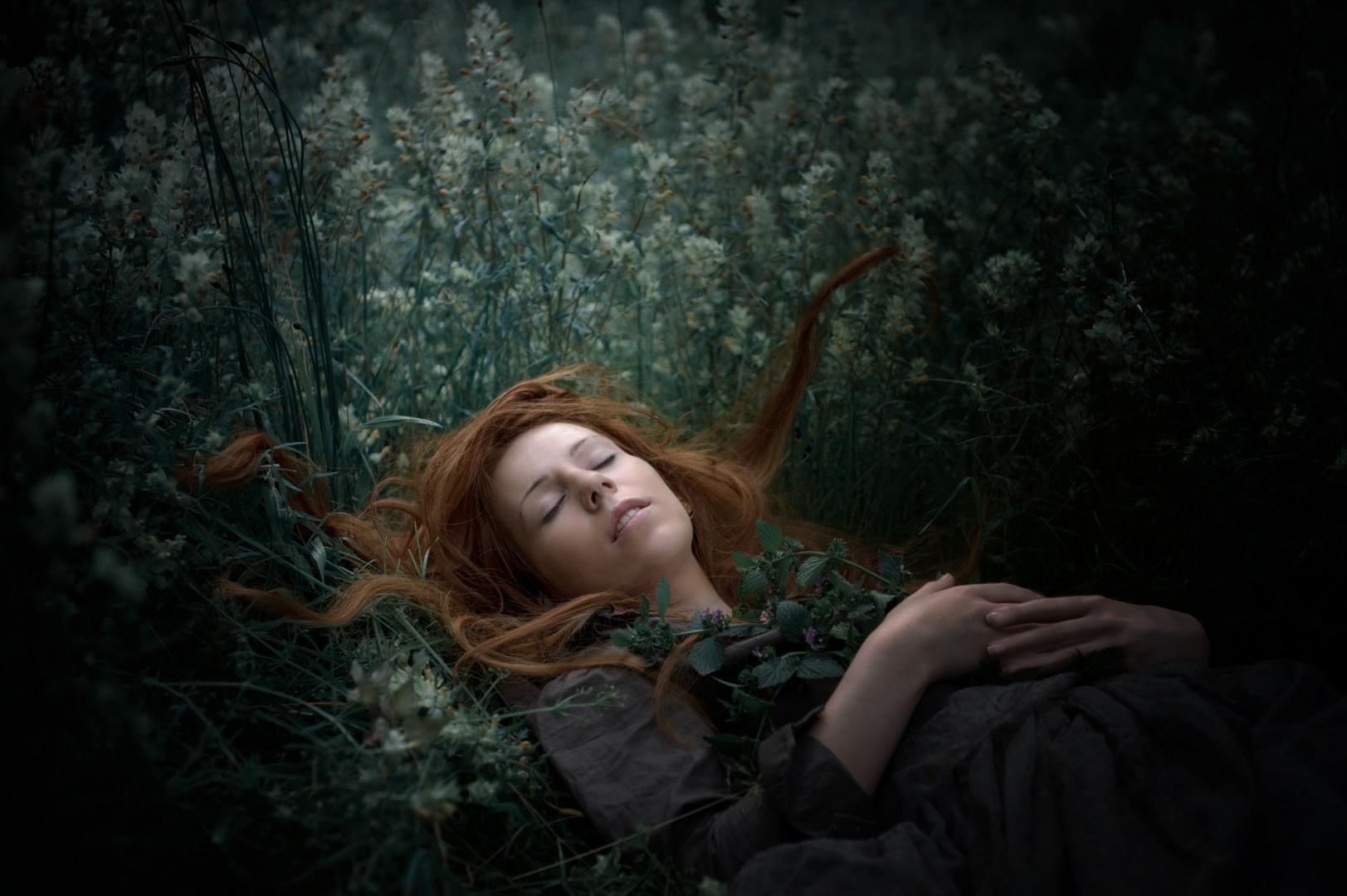 Die schlafende Schöne