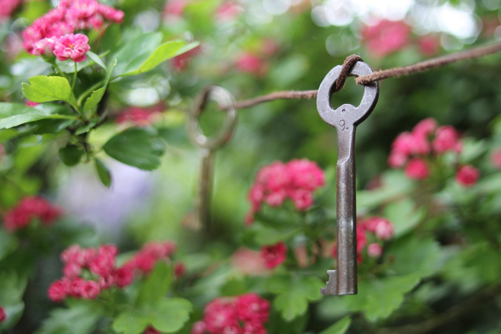 die schlüssel zum herzen
