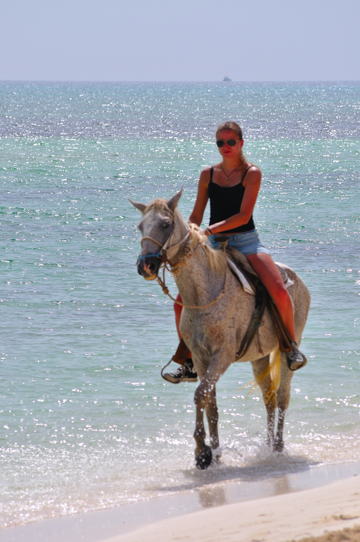 Die schöne Reiterin