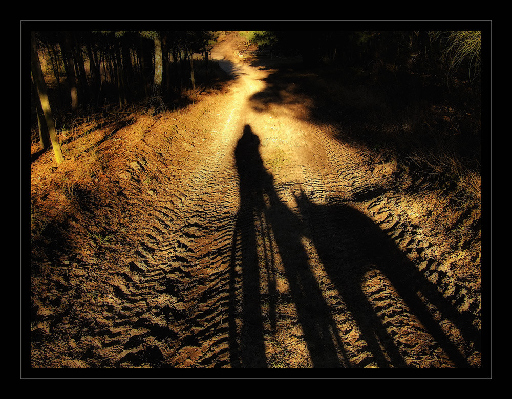 Die schöne Schattenseite