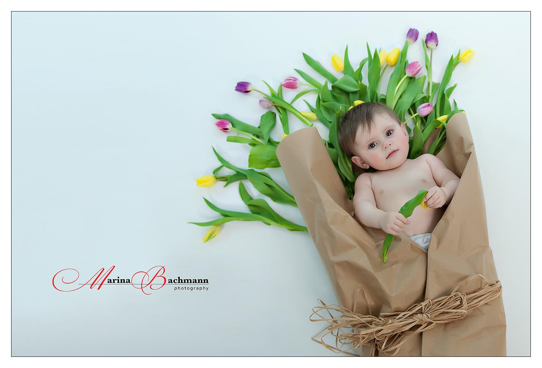 Die schönste Tulpe.
