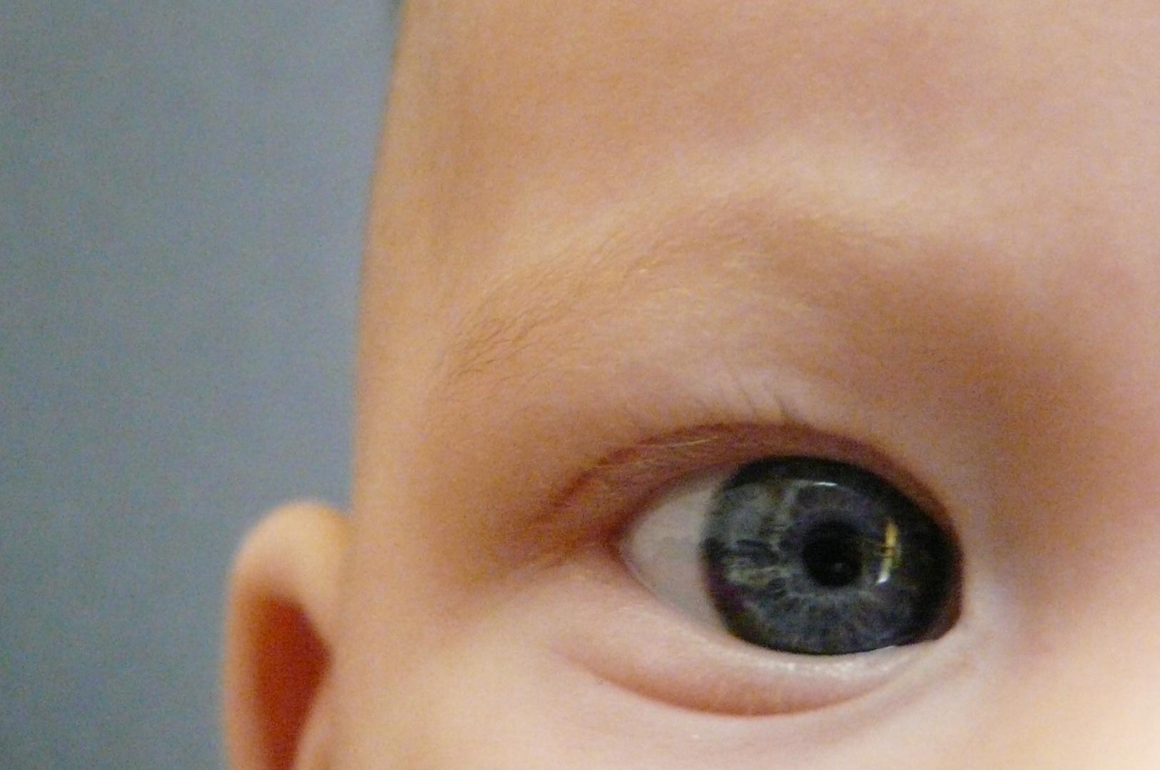 Die schönsten Augen der Welt :)