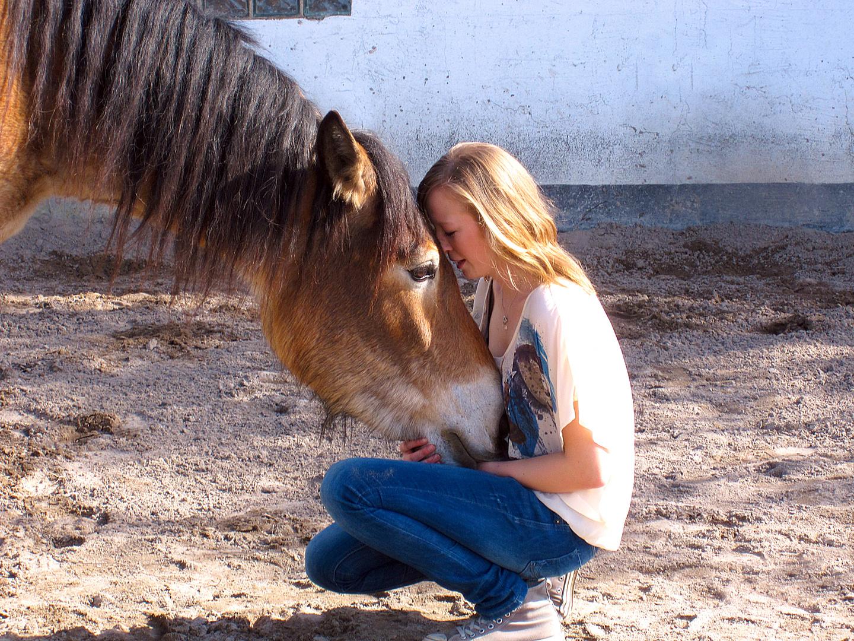 Die Seele eines Pferdes äußert sich denjenigen, die sie suchen ♥
