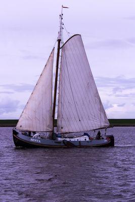 Die Senta auf dem Lauwersmeer