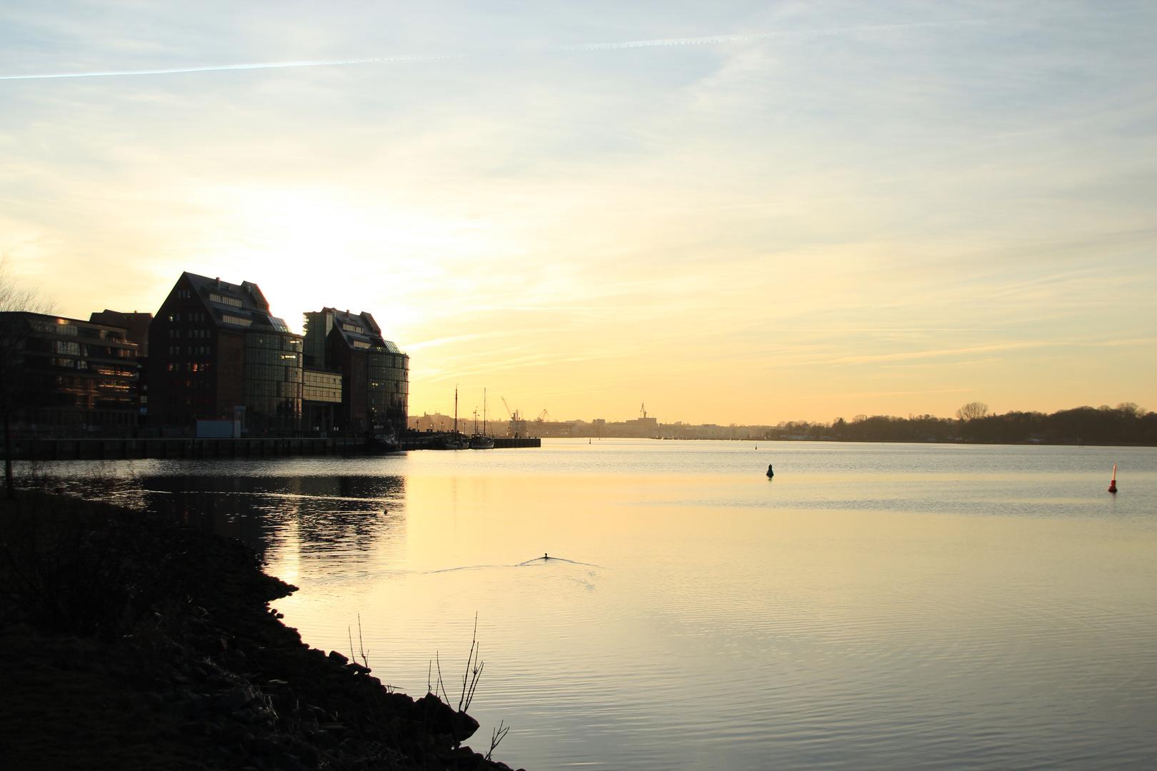 Die Skyline von Rostock