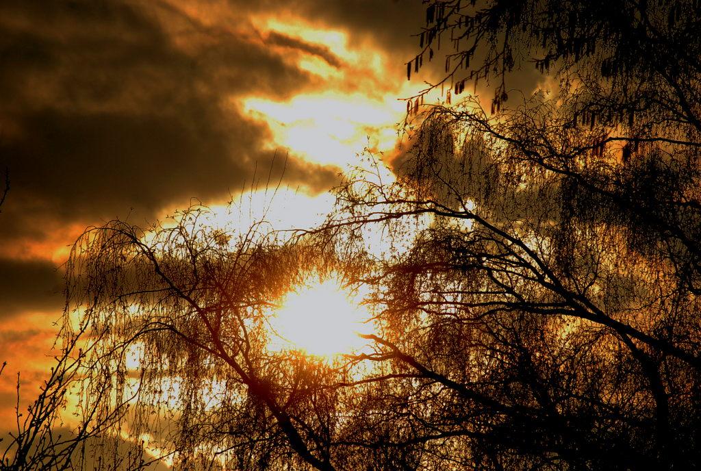 Die Sonne am Abendhimmel