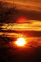 Die Sonne geht auf ;)