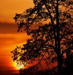 die Sonne geht unter in ihren schönsten Farben