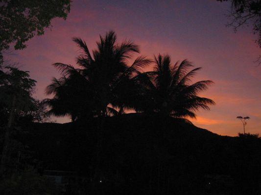 Die Sonne geht unter in Palm Cove