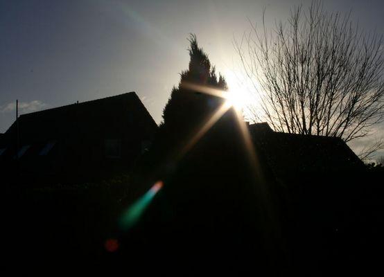 Die Sonne Hintern Busch *g*
