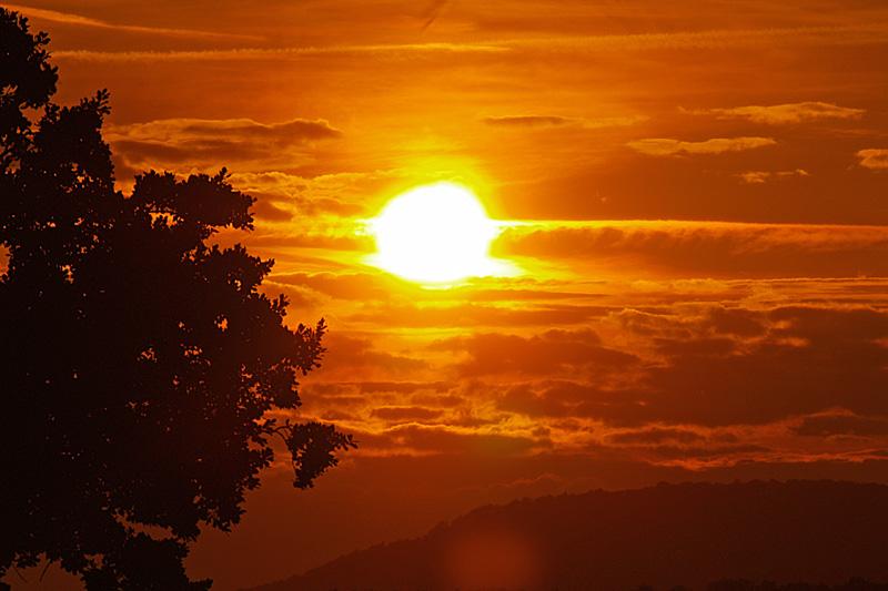 Die Sonne ist die Universalarznei aus der Himmelsapotheke.