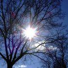 Die Sonne ist schon da! ;-)
