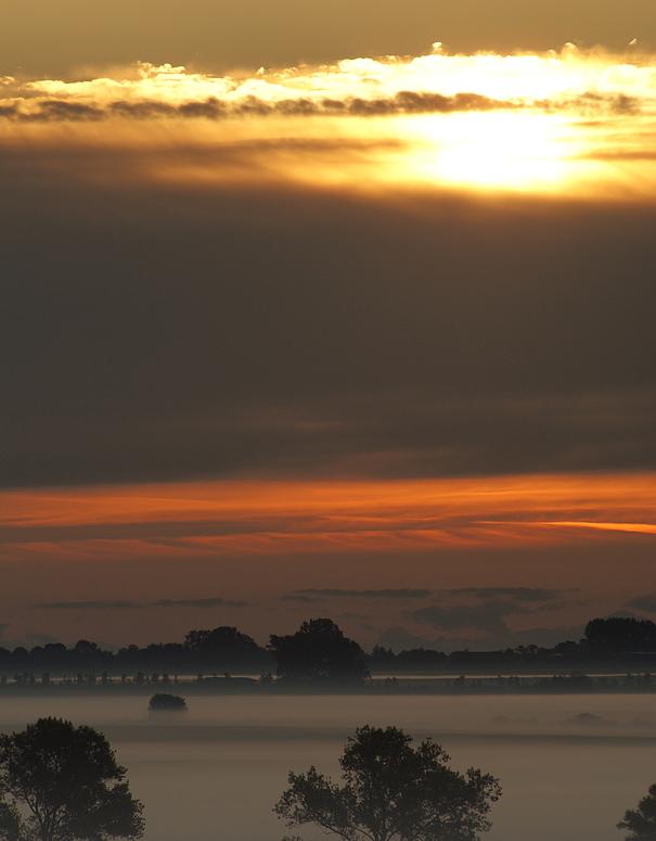 Die Sonne kommt, der Nebel geht