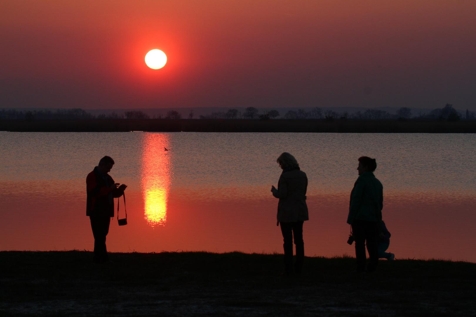 Die Sonne liegt im Wamsee