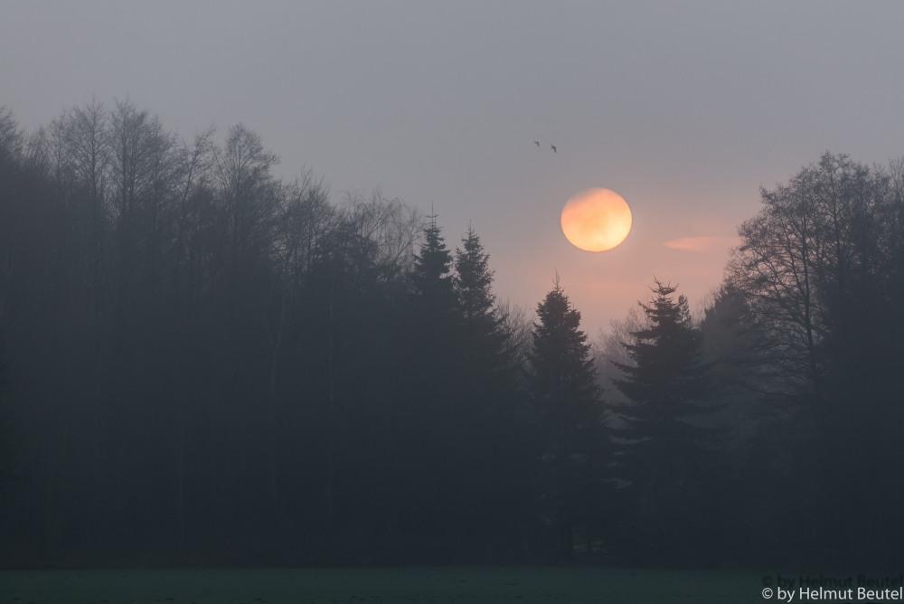 Die Sonne versinkt im Nebel