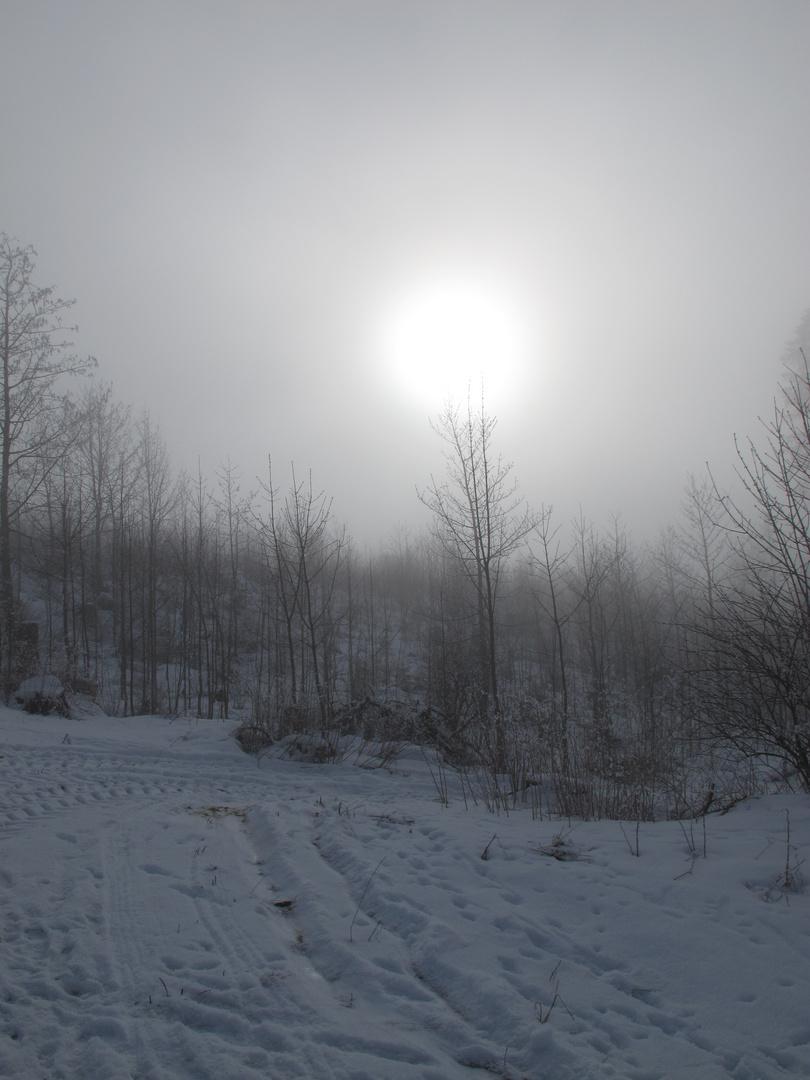 Die Sonne vor dem Durchbruch