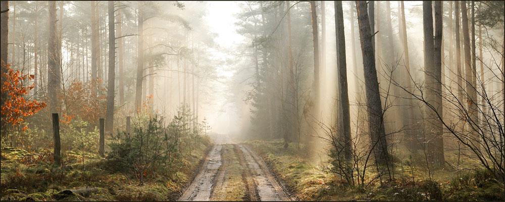 Die Sonnenstrahl Route!