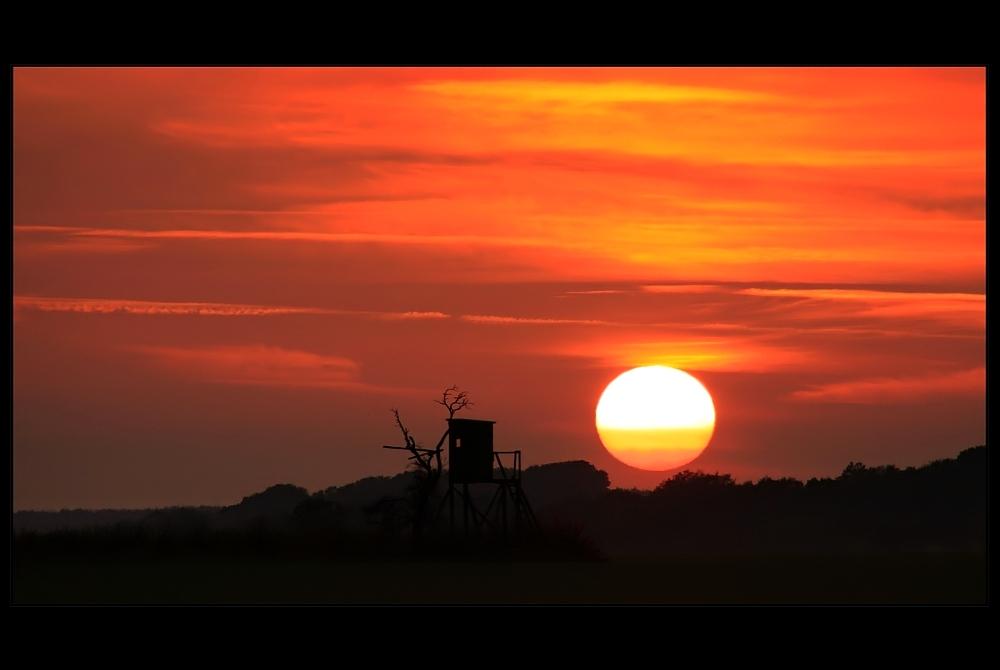 Die Sonnenwarte [3]