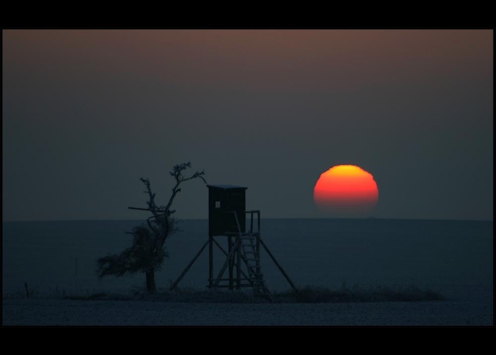 Die Sonnenwarte