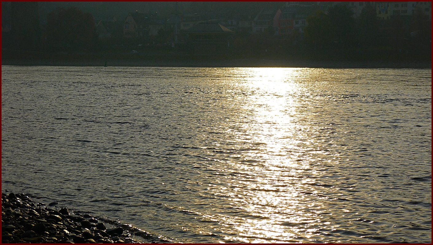 Die späte Sonne über dem Rhein bei km 551