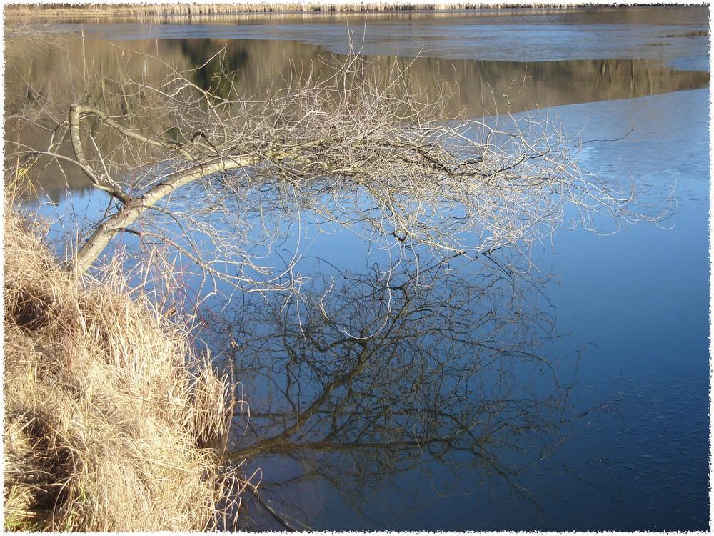 Die Spiegelung im See