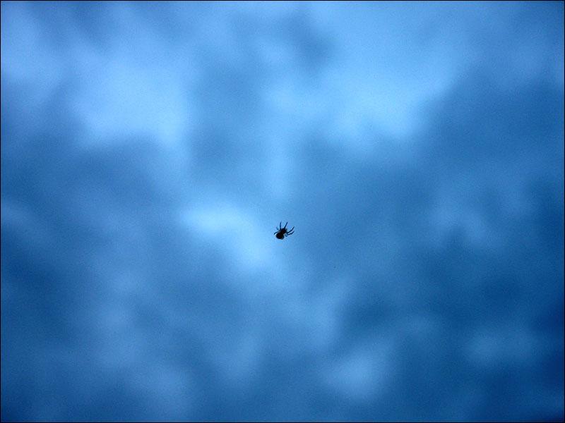Die spinnen, die Wettermacher!