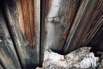die Sprache des Holzes