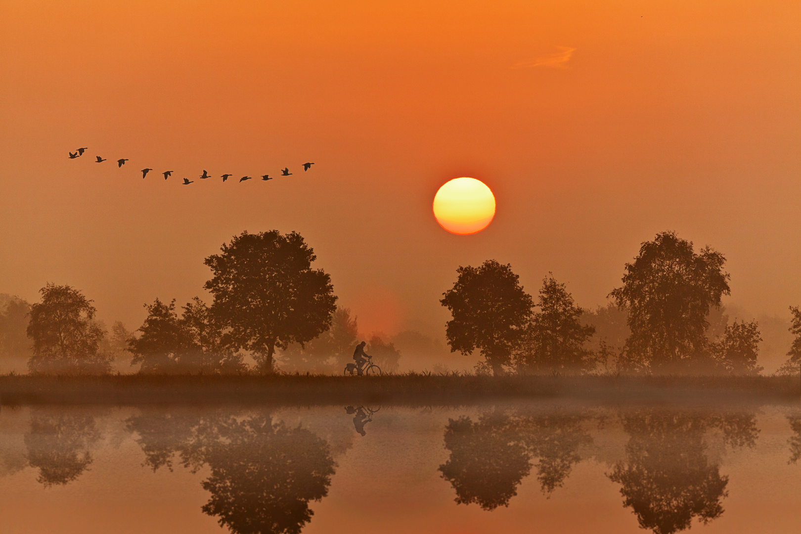 Die Spur der Zugvögel