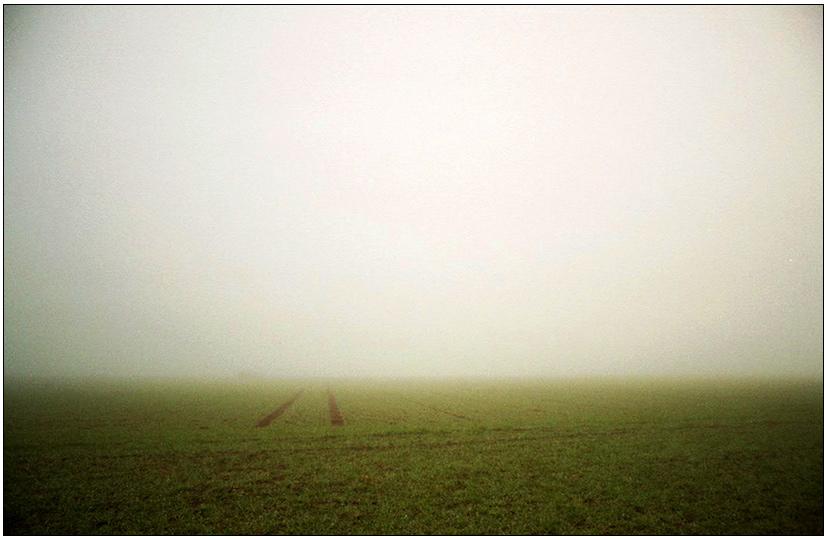 die Spur verliert sich im Nebel