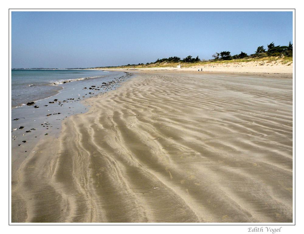 die Spuren im Sand.....