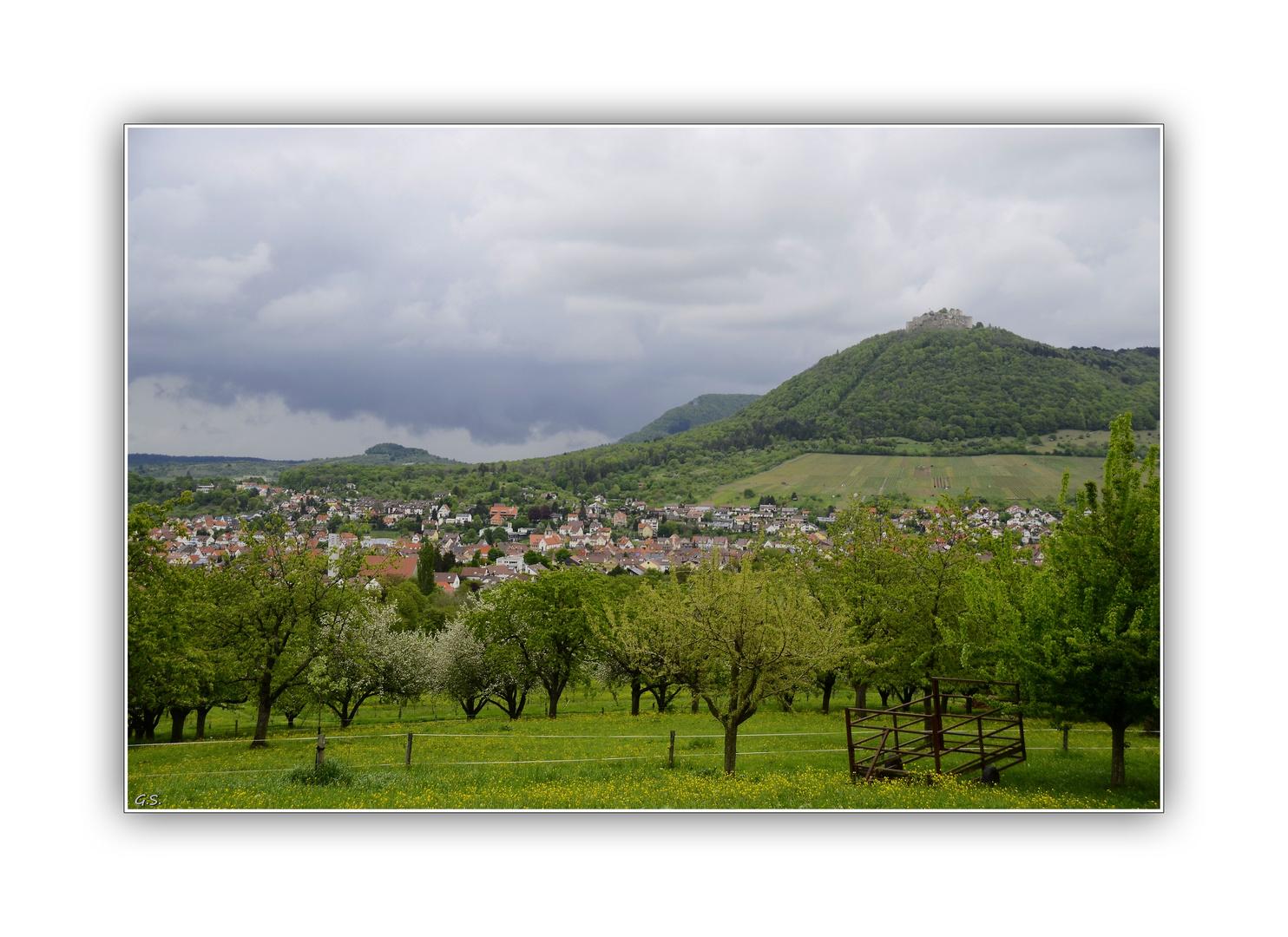 Die Stadt Neuffen am Fuße der schwäbischen Alb