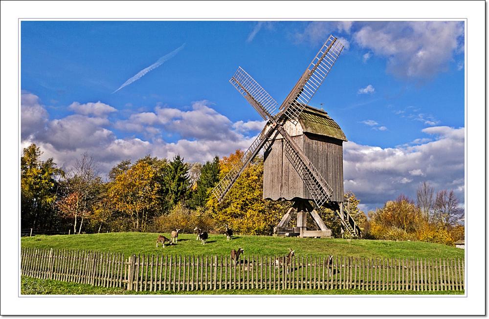 ~ die Ständermühle ~
