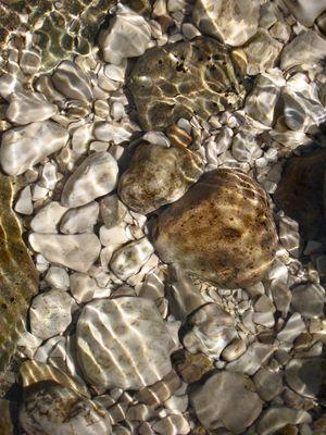 die Steine murmeln