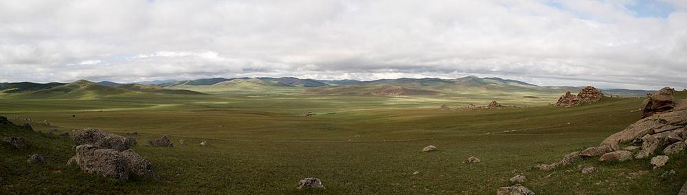 Die Steppe (2)