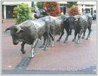 die Stiere durch die Stadt treiben ...