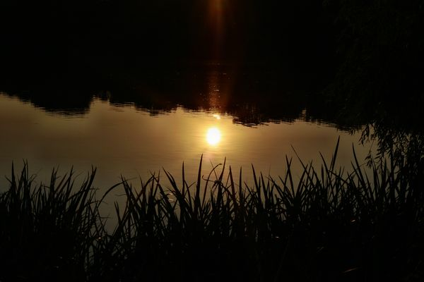 die Stille beim Sonnenuntergang in der Natur ein Genuß