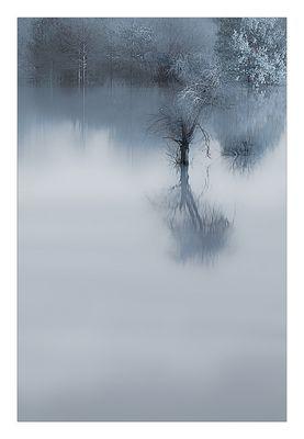 die Stille des Wassers...