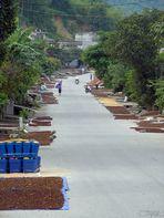 Die Straße der Düfte