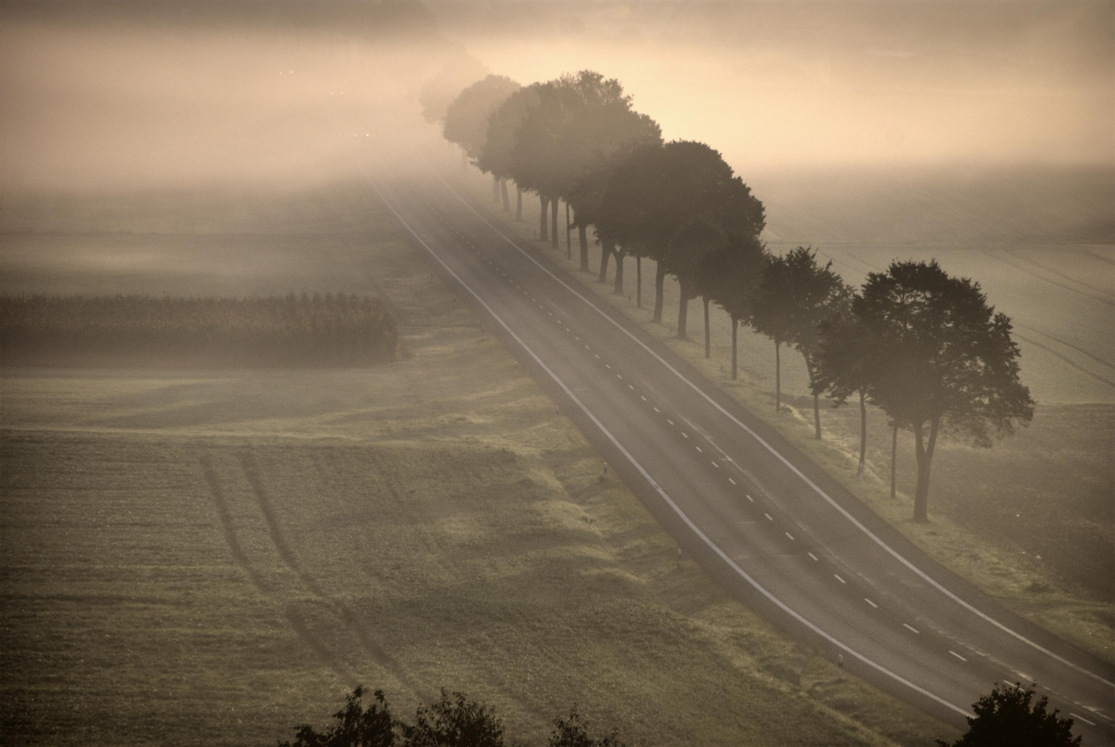 Die Strasse ins Morgenland