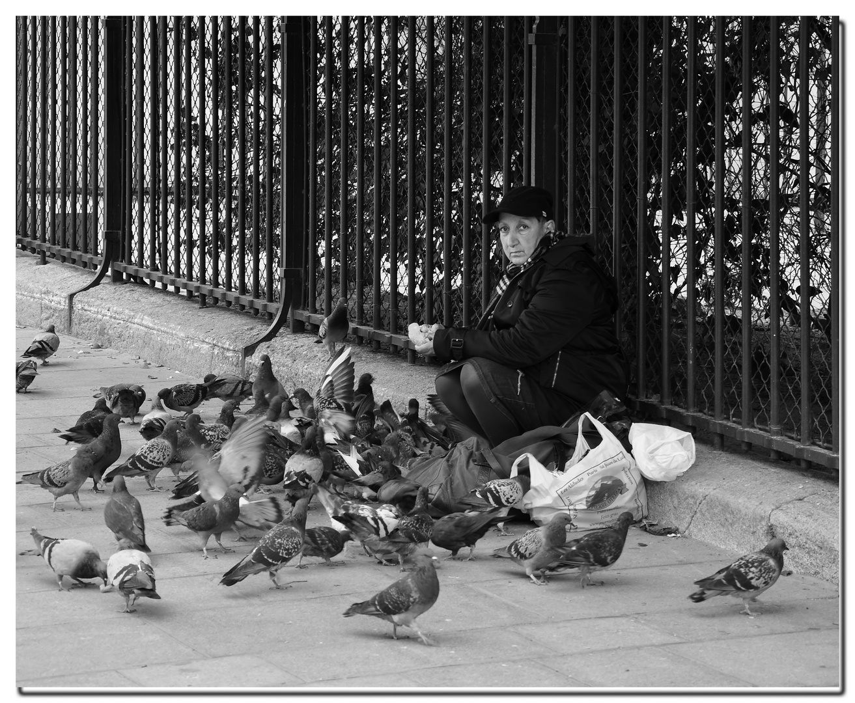 Die Taubenfrau