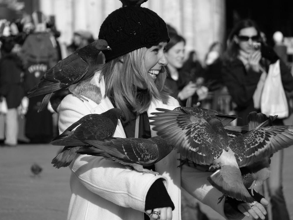 Die Taubenkönigin